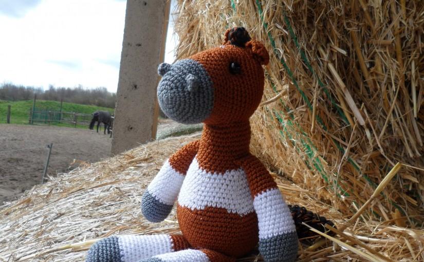 Tamino, das Pferd