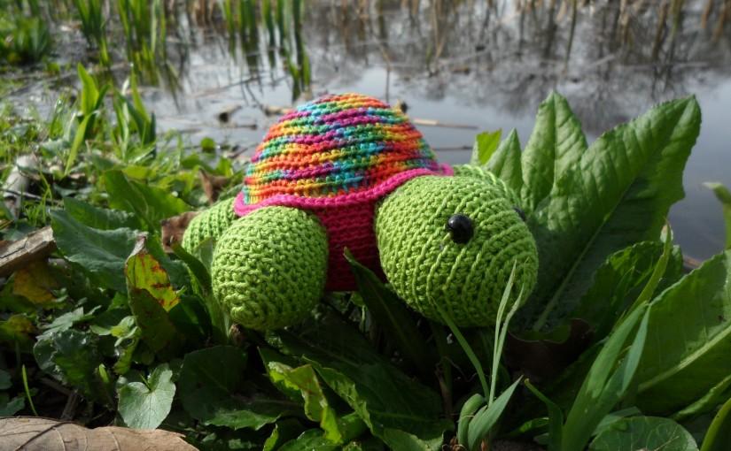 Jura, die große Schildkröte
